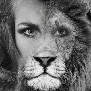Half Human Half Lion