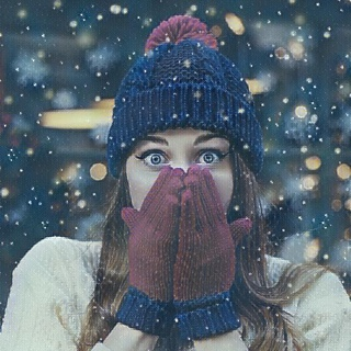Snowy Veil