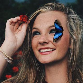 Blue Rainforest Butterfly