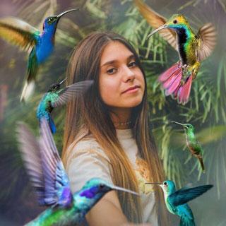 Hummingbirds Overlay